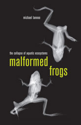 Malformed FrogsThe Collapse of Aquatic Ecosystems
