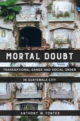 Mortal DoubtTransnational Gangs and Social Order in Guatemala City